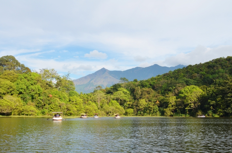 Wayanad lake