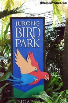 JurongBirdPark3