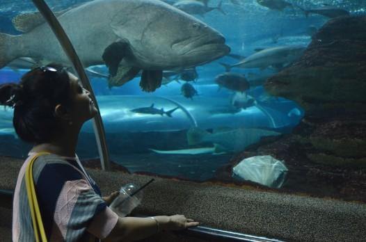 UnderwaterWorld2