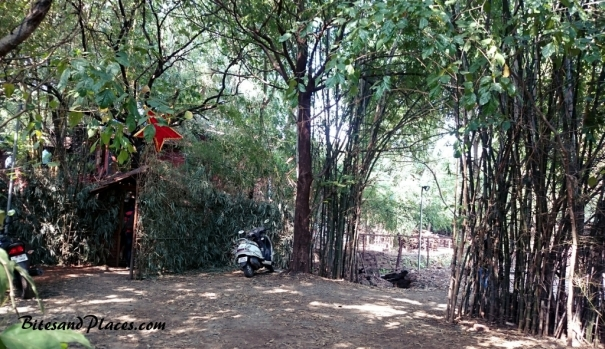 bamboo-entrance